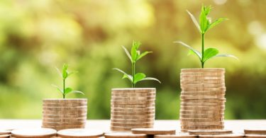 Kleingeld von Nachhaltigkeitsbanken in drei Stapeln mit herauswachsenden Sprösslingen