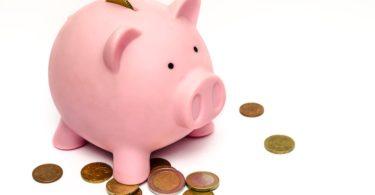 Vermögenswirksame Leistungen in Form von Münzen in rosa Sparschwein gespart